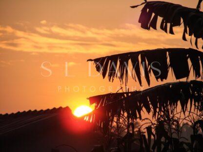 Sunrise of the Congo - S L Davis Photography