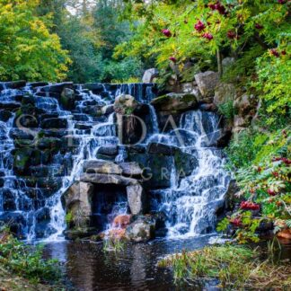 Royal Cascade - S L Davis Photography